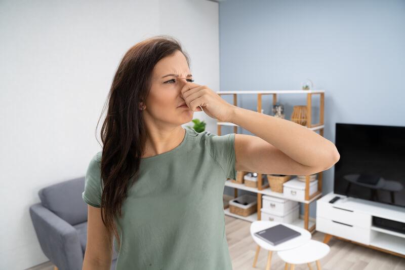 stankoverlast kruipruimte verhelpen